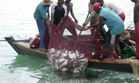 fishing boat jobs in south africa coastal east africa places wwf