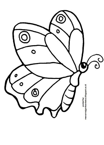 Kupu Kupu Hitam Lucu Dan Unik gambar 9 contoh gambar sketsa kupu cantik unik mania mudah