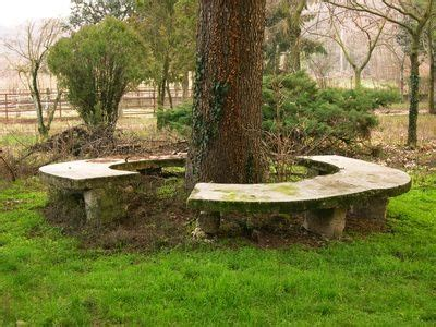 octagon tree bench concrete tree bench concrete art pinterest
