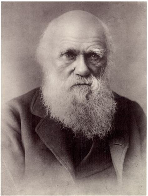 biography of charles darwin eec chick life with ectrodactyly ectodermal dysplasia