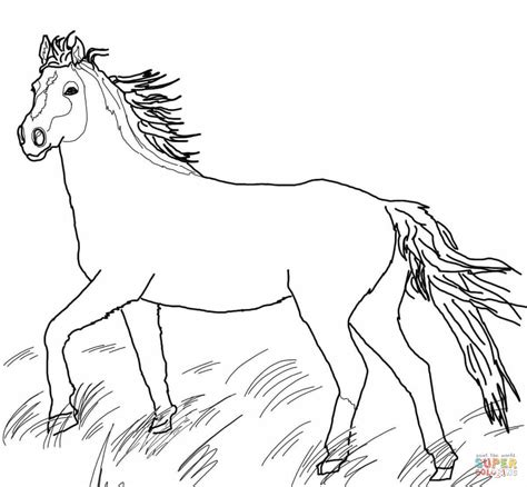 coloring pages of paint horses clydesdale paint horses coloring pages coloring pages