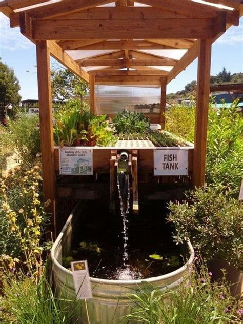 backyard aquaponics system design 25 best ideas about aquaponics on pinterest aquaponics