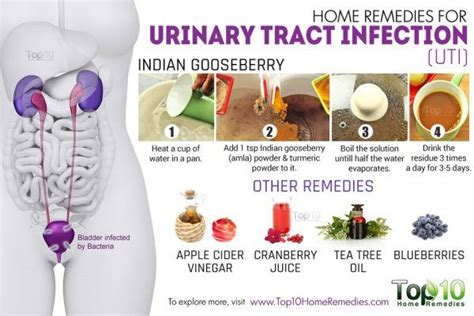 home remedies for urinary tract infection uti top 10