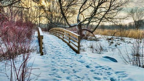 Mn Landscape Arboretum Ski Trails Walk The Minnesota Landscape Arboretum 365 Cities