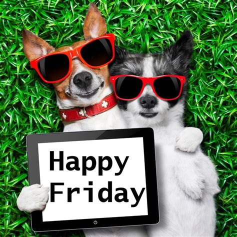Happy Friday 3 by 751 Best Images About Day Friday On
