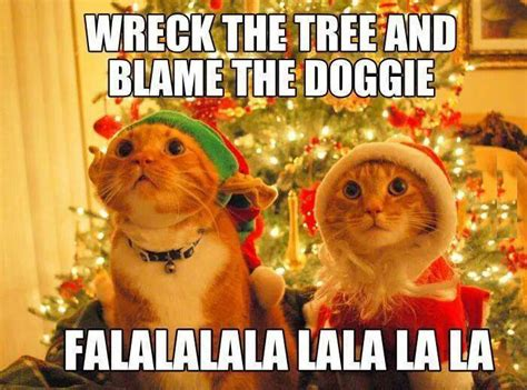 Christmas Cat Meme - cat wrecks christmas tree funny pictures quotes memes