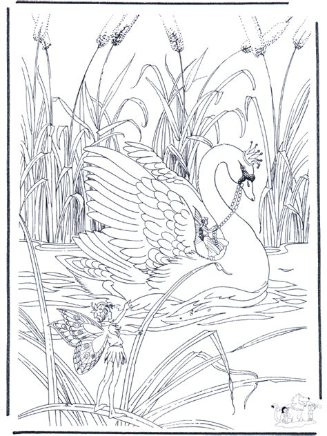 free swan bird coloring pages
