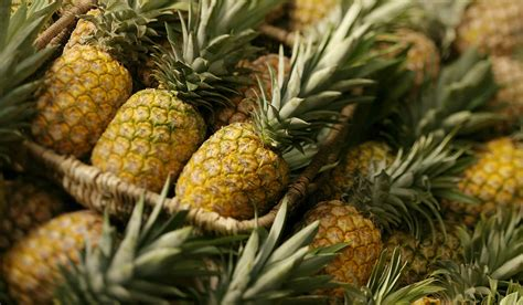 pineapple wallpaper pineapple wallpapers images photos pictures backgrounds