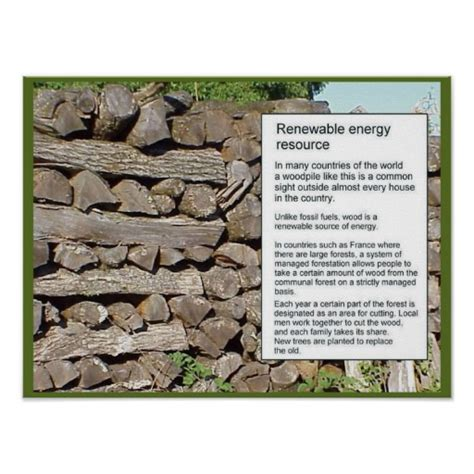 woodworking resources scienece energy renewable resource wood posters zazzle