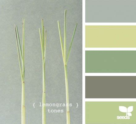 lemongrass color seeds lemongrass color palette hues
