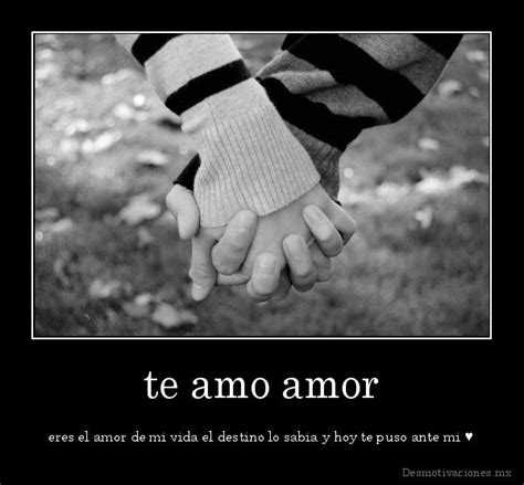 imagenes te amo mi amor te amo 2 desmotivaciones mx te amo amor eres el amor de mi