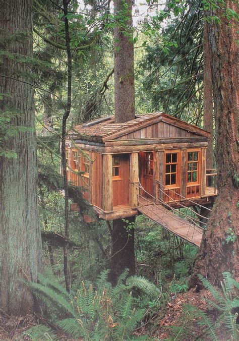 treehouse  gardens