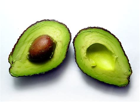 avocado in cucina l avocado in cucina avocado ripieni tomato