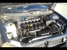 2004 Suzuki Verona Throttle Warning Do Not Buy A Suzuki Verona