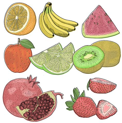 fruit fast fruit and fast food detailed drawings