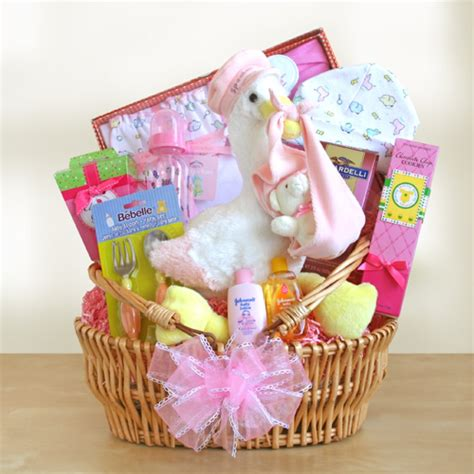 special stork delivery baby basket free shipping