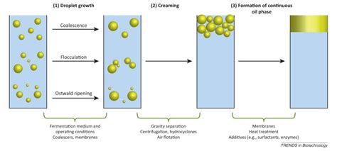 layout for the production of emulsions microbial advanced biofuels production overcoming