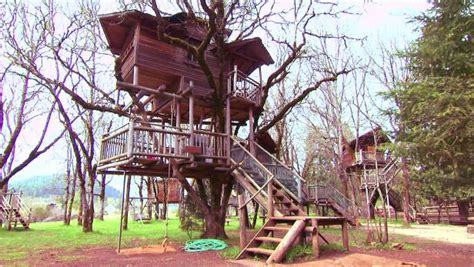 Travel Channel Eat Drink Travel Sweepstakes - sleep in a luxury treehouse travel channel