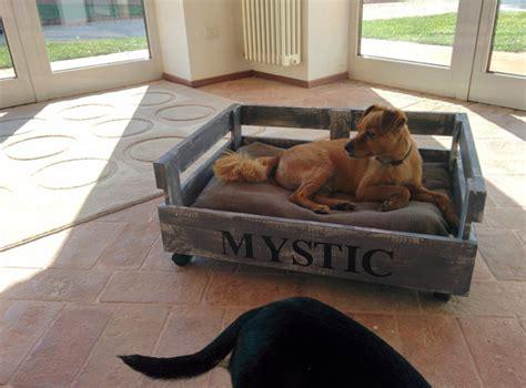 dait interno cuccia lettino interno esterno per cani e gatti fatta a