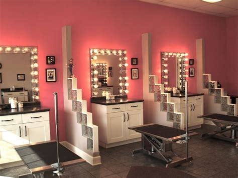 puppy salon 12 best grooming salon daycare ideas images on grooming salons