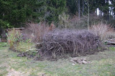 wildrosenhecke anlegen wildes gartengl 252 ck totholzhecke benjeshecke anlegen
