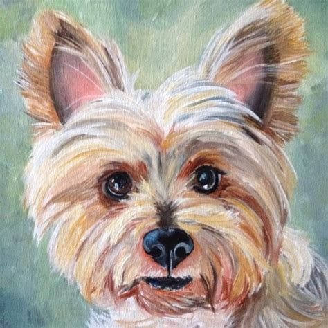 yorkie colors 17 best images about yorkie portraits on acrylics portrait and original