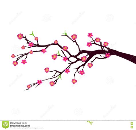 new year blossom tree new year blossom tree vector 28 images watercolor