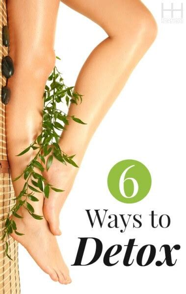 Ways To Detox Today by 6 Ways To Help Your Detox Homestead