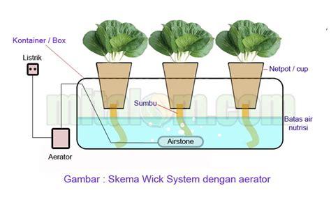 cara membuat hidroponik wick system tutorial lengkap menanam hidroponik dengan botol bekas