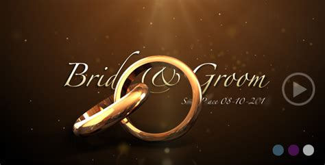 Wedding Slideshow Animation by Weddings Rings Intro By Flashato Videohive