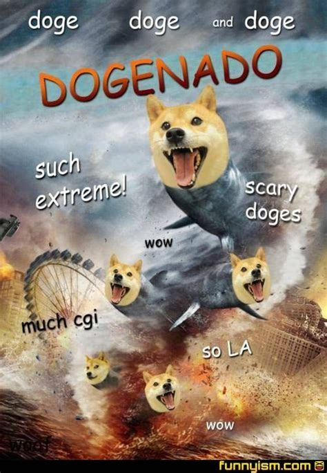Dog Meme Wow - funny doge memes