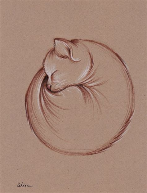 7 Drawing Ideas by Best 25 Cat Drawing Ideas On Simple Cat