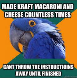 Paranoid Parrot Meme - paranoid parrot pictures to pin on pinterest pinsdaddy