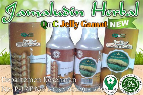 Obat Herbal Luka Bernanah Jelly Gamat Qnc cara mengobati paronikia infeksi kuku bernanah produk