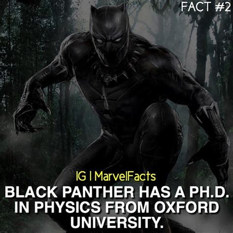 marvel film facts 17 best images about black panther on pinterest civil