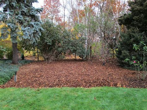 Preparing Your Vegetable Garden For Fall Quiet Corner Preparing Your Vegetable Garden For Winter