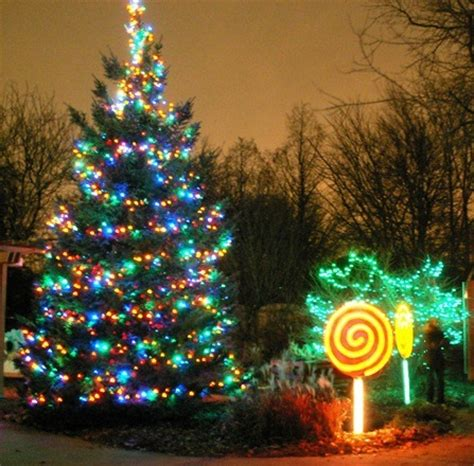 brookfield zoo lights hours lights in illinois 2017 midwest wanderer