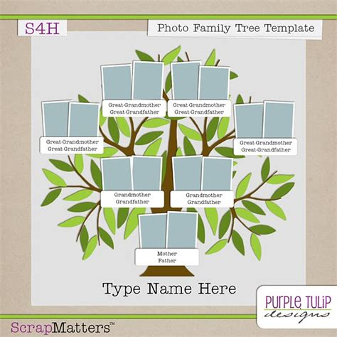 microsoft family tree template purple tulip designs photo family tree template