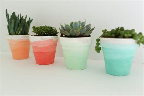cute succulent pots ombre succulent planters a diy