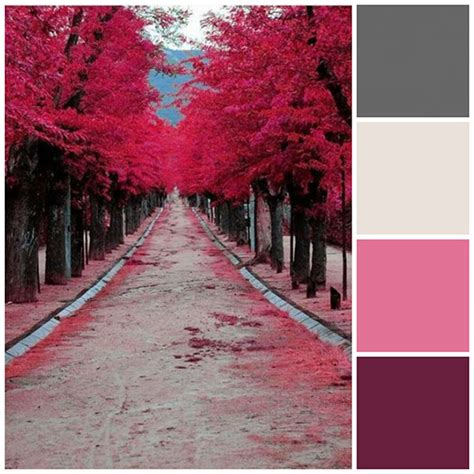 pink and grey color scheme sheknows spacelifts pretty purple and pink