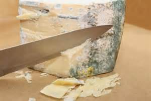 the cheese is old and moldy where is the bathroom is it okay to eat cheese with mold on it