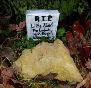 backyard burial betta burial planning the funeral and burial of your