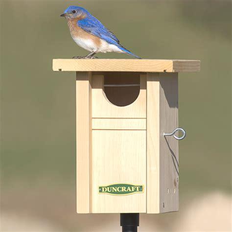 duncraft com gilwood bluebird nest box pole