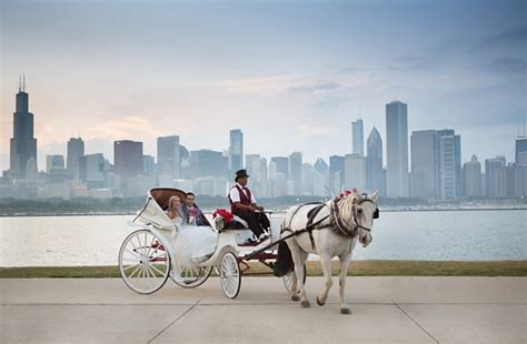 best chicago top 20 wedding photographers in chicago