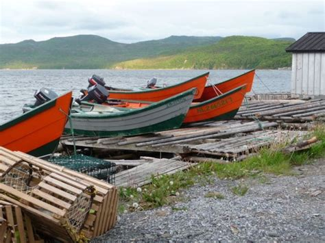 lowe boats newfoundland 17 best images about home on pinterest in august