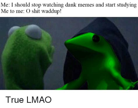 Reddit Dank Memes - me i should stop watching dank memes and start studying me to me o shit waddup true lmao