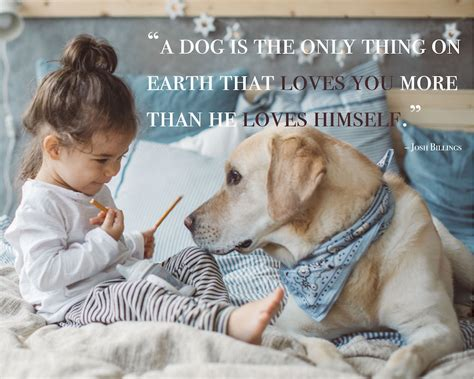 dog quotes captions  messages shutterfly