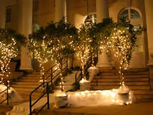 small trees with lights i want my boring venue to look amazing help