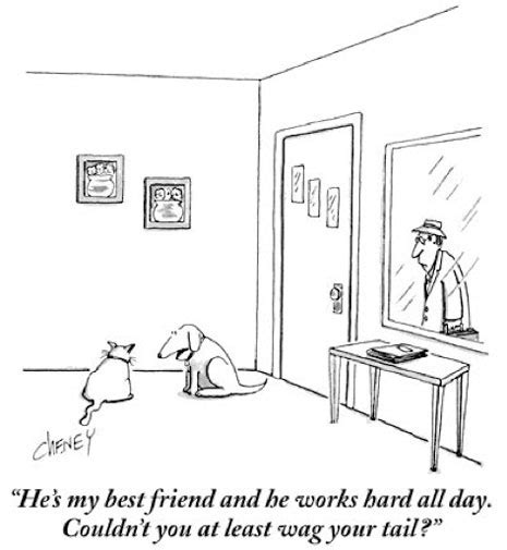 the joke bow to books bow not to mention wow the new yorker