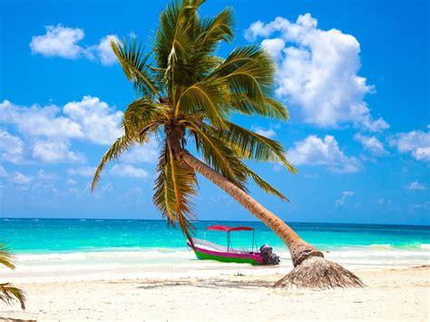 imagenes mamonas en la playa playa para 237 so un rinc 243 n del cielo para relajarte en tulum